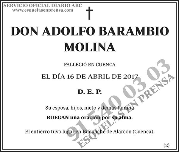 Adolfo Barambio Molina